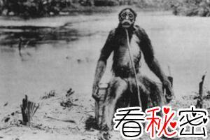 蒙古野人阿尔马斯之谜,介于人和猿之间的奇怪种群