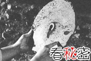 揭秘杜立巴石碟是真是假,杜立巴石碟是惊天骗局已证实