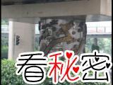 1995年上海高架桥打桩遇阻,找高僧作法,上海唯一一个刻了龙形图案的桥墩