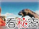 1986年神农架当地村民在水潭中发现3只巨型水怪