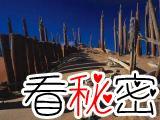 双鱼玉佩:被中国封杀的灵异事件
