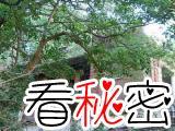 香港传闻闹鬼最凶的地方:南固台