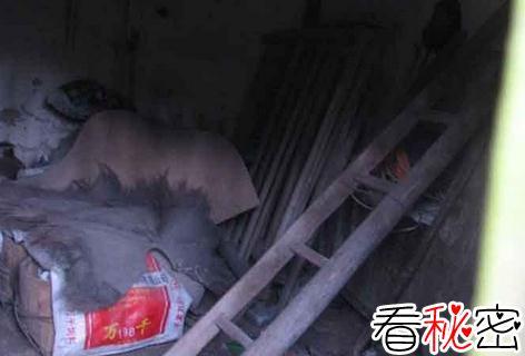 重庆红衣男孩灵异事件 到底是他杀还是自杀