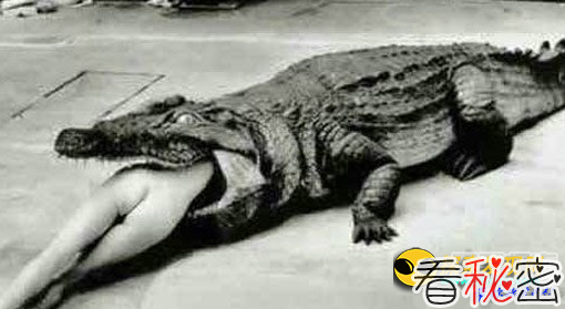 外国古代人惊人酷刑:动物咬死女囚犯
