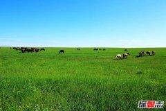 世界四大著名草原:3个来自中国第1天然牧场