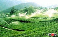中国最大的丘陵:东南丘陵红壤丰富地层复杂