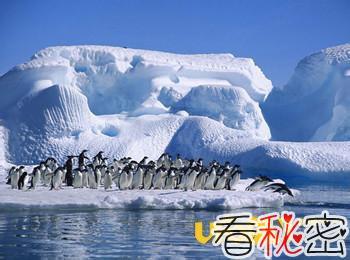 世界上最大的冰川在哪个洲大揭秘