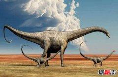世界上最大的恐龙 地震龙可让大地地震体长超40米