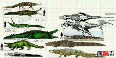 地球最大的鳄鱼普鲁斯鳄 水陆霸主最终灭绝(原因揭秘)