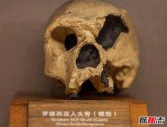 生活在古代的人类:罗德西亚人(善于制作工具)