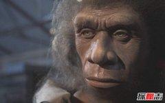 尼安德特人浑身是病,致病基因全部遗传人类(1.5%)