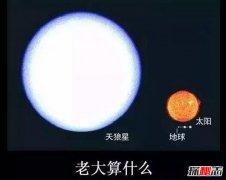 天狼星是否比太阳大?天狼星的质量是太阳多少倍