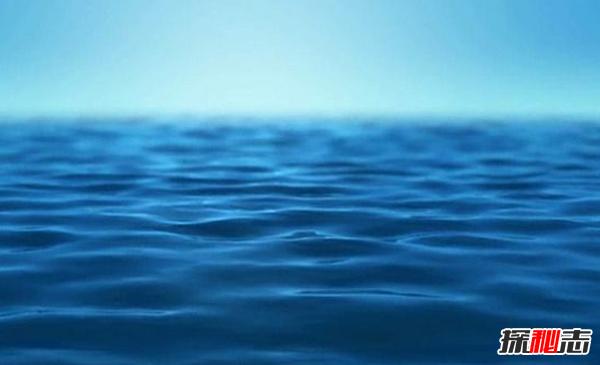 十大最奇怪最危险的深海生物,篮星寿命可长达35年