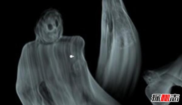 鬼存在吗?世界上有鬼的十大证据,死者体重变化实验证明世上有鬼