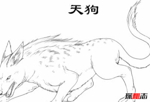 天狗是什么?为什么会有天狗吞月的现象(太阳月球地球同一直线上)