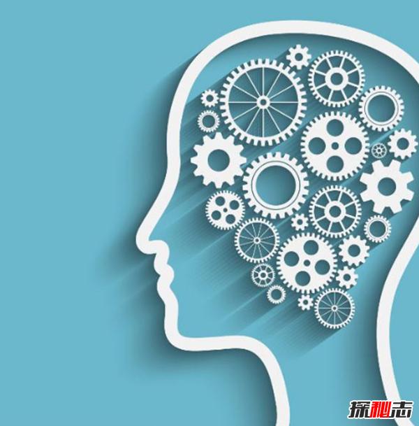 智商低的人有哪些特征?智商低的十种表现