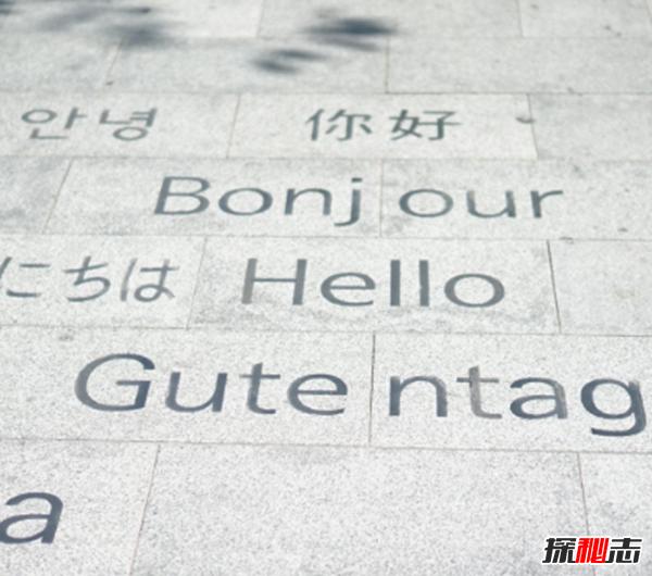 世界最难学的十二大语言,不是中文和英语,而是它!