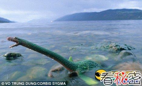专家:海怪和水怪有可能藏在大海中