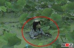 水猴子为什么要拉人下水?水鬼吃人图片曝光(科学揭秘)
