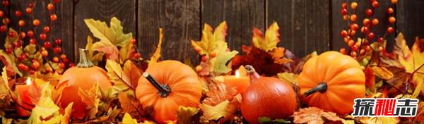 秋天有什么特点?秋天发生的十大有趣的事