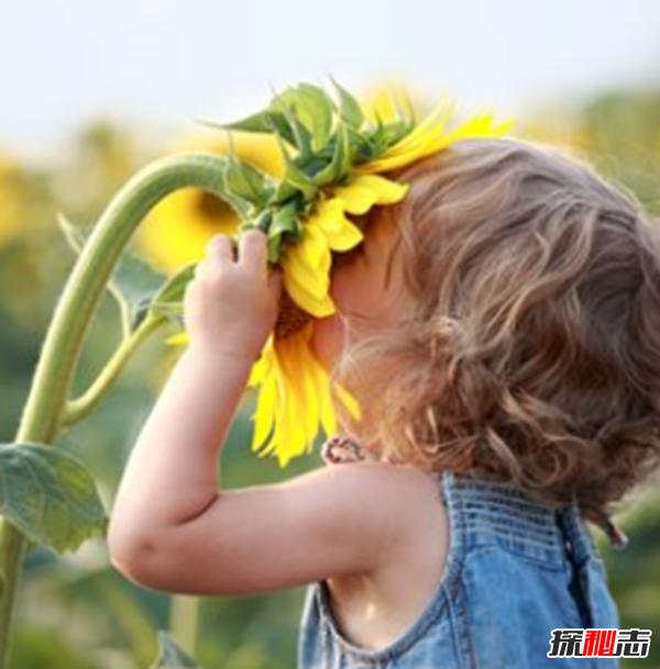 人的幸福感取决于什么?人生十大幸福感来源