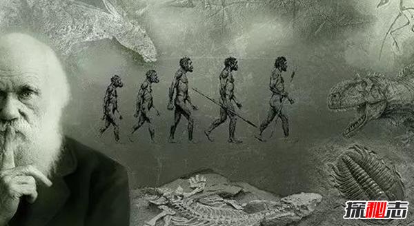 进化论误导了整个人类?十大全新的进化论观点