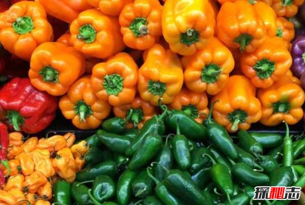 辣椒的12大营养价值及功效 能当止痛剂,还能预防心脏病
